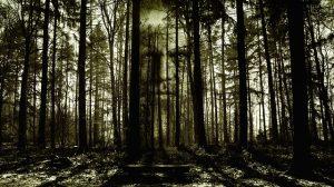 horror-2156302_640