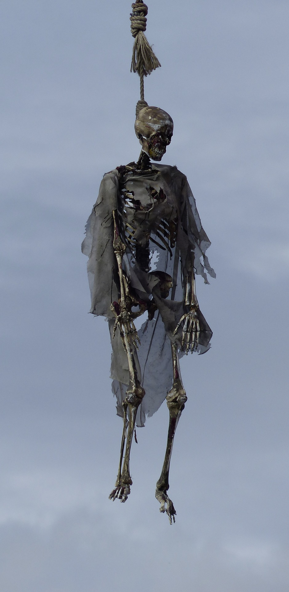 7. skeleton-2269764_1920 (2017_10_26 11_36_25 UTC)